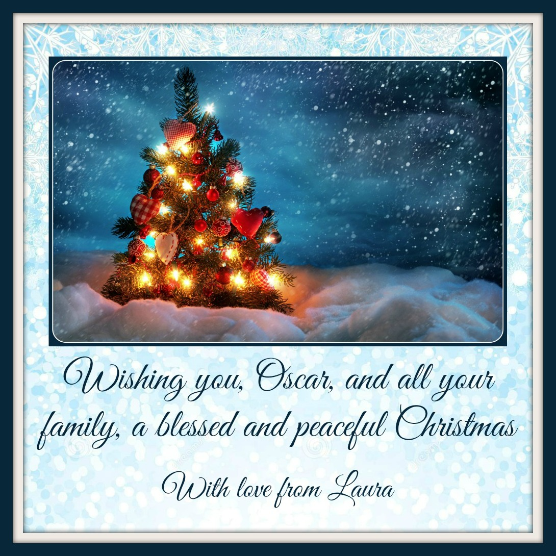 Blessed and peaceful christmas support for oscar pistorius private christmas card kristyandbryce Images